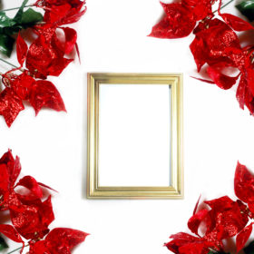 red-poinsettias-and-picture-frame