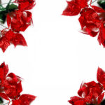 red-poinsettias-in-four-corners